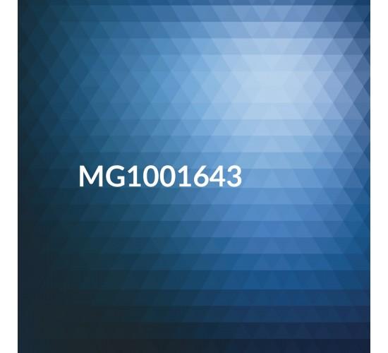 Magnets DL 210x99mm Full Colour