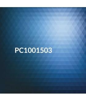 DL Cards 99x210mm Full Colour 2 Sides Matt Laminate 1 Side