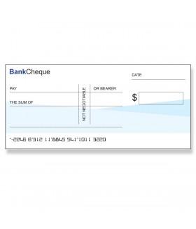 Novelty Big Cheque